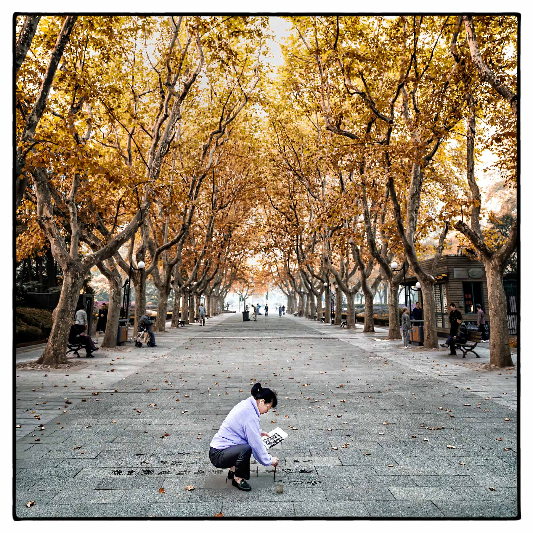 a-chinese-woman-practices-dishu-on-a-park-walkway-in-shanghai-china