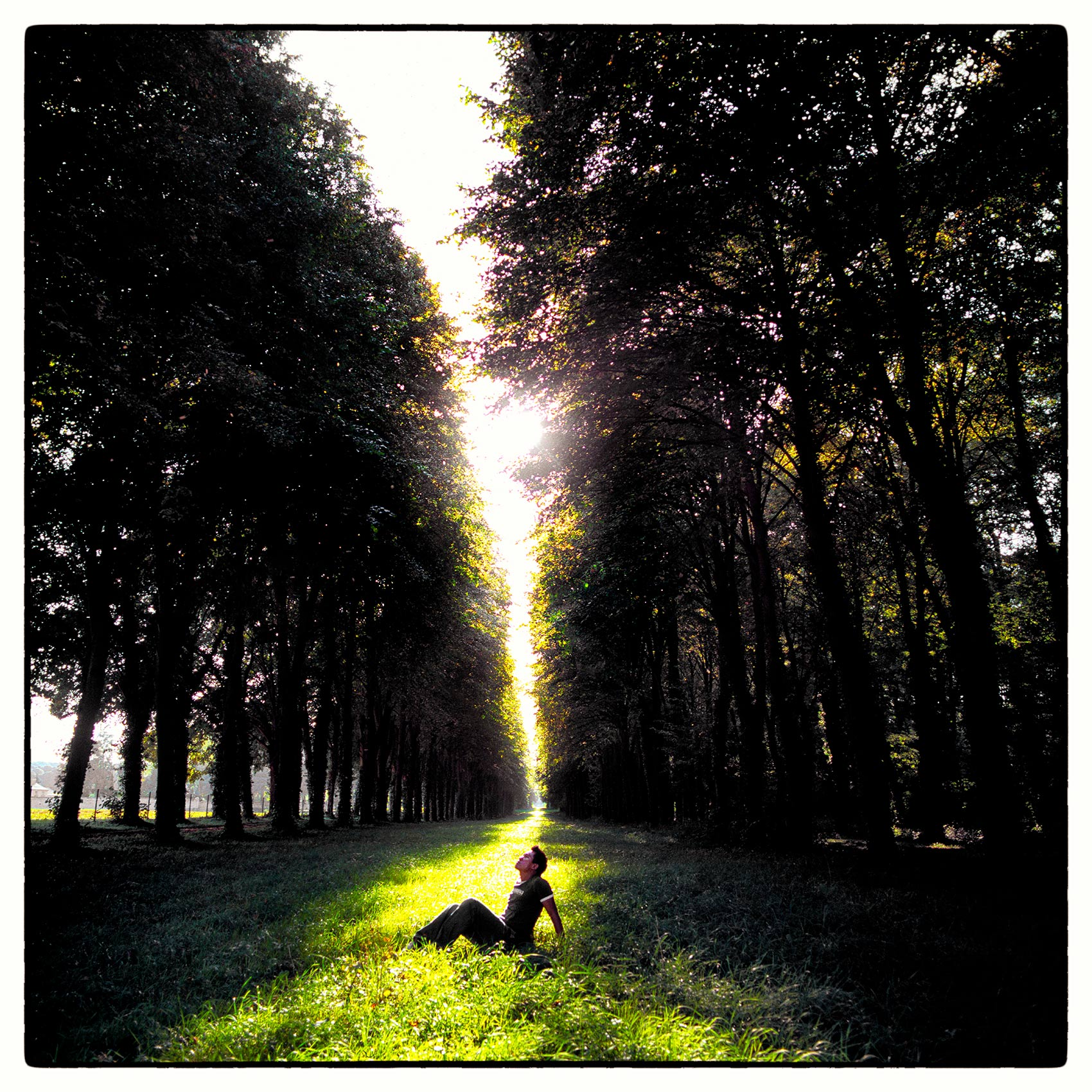 viradeth-manixab-sits-between-a-long-row-of-trees-at-sunset-while-visiting-chateau-de-versailles-in-france