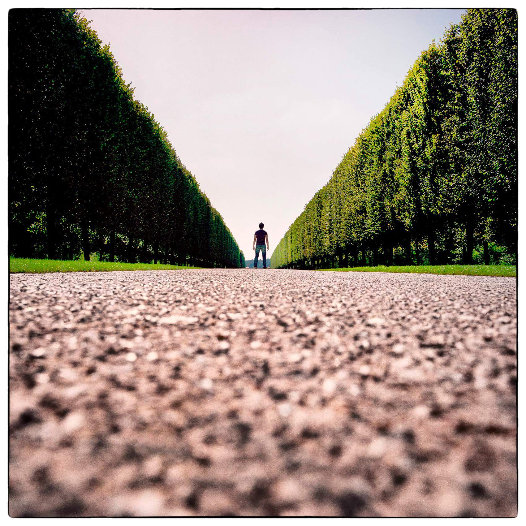 a-man-stands-in-the-middle-of-the-road-leading-to-chateau-de-versailles-francecopy