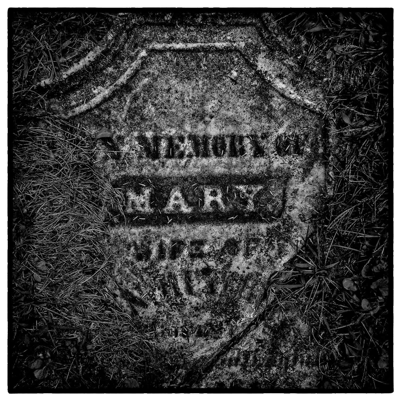 a-moss-covered-tombstone-by-award-winning-Toronto-photographer-John-Hryniuk