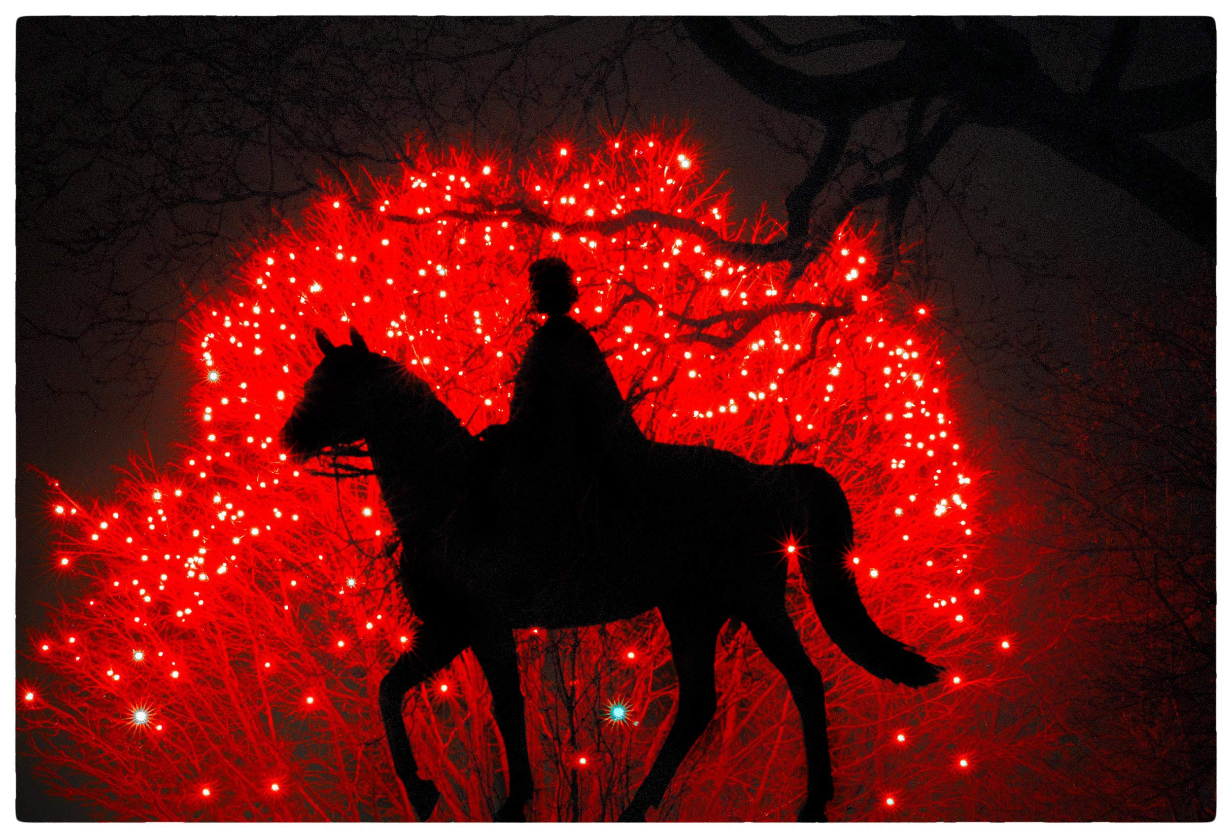 a-statue-of-queen-elizabeth-on-horseback-is-silouetted-against-a-set-of-red-christmas-lights-on-parliament-hill-in-ottawa-canada-copy