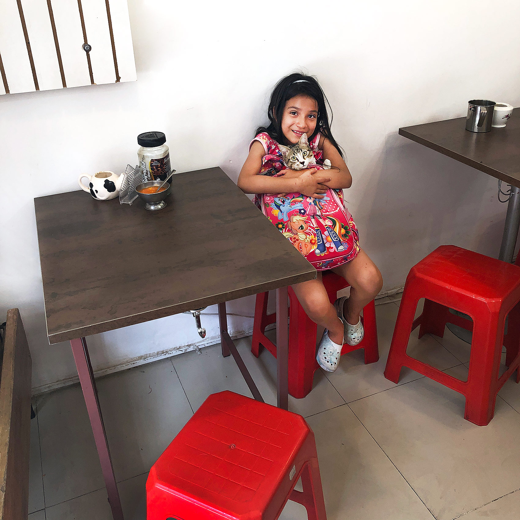 a-young-ecuadorian-girl-poses-with-her-cat-in-a-quito-cafe