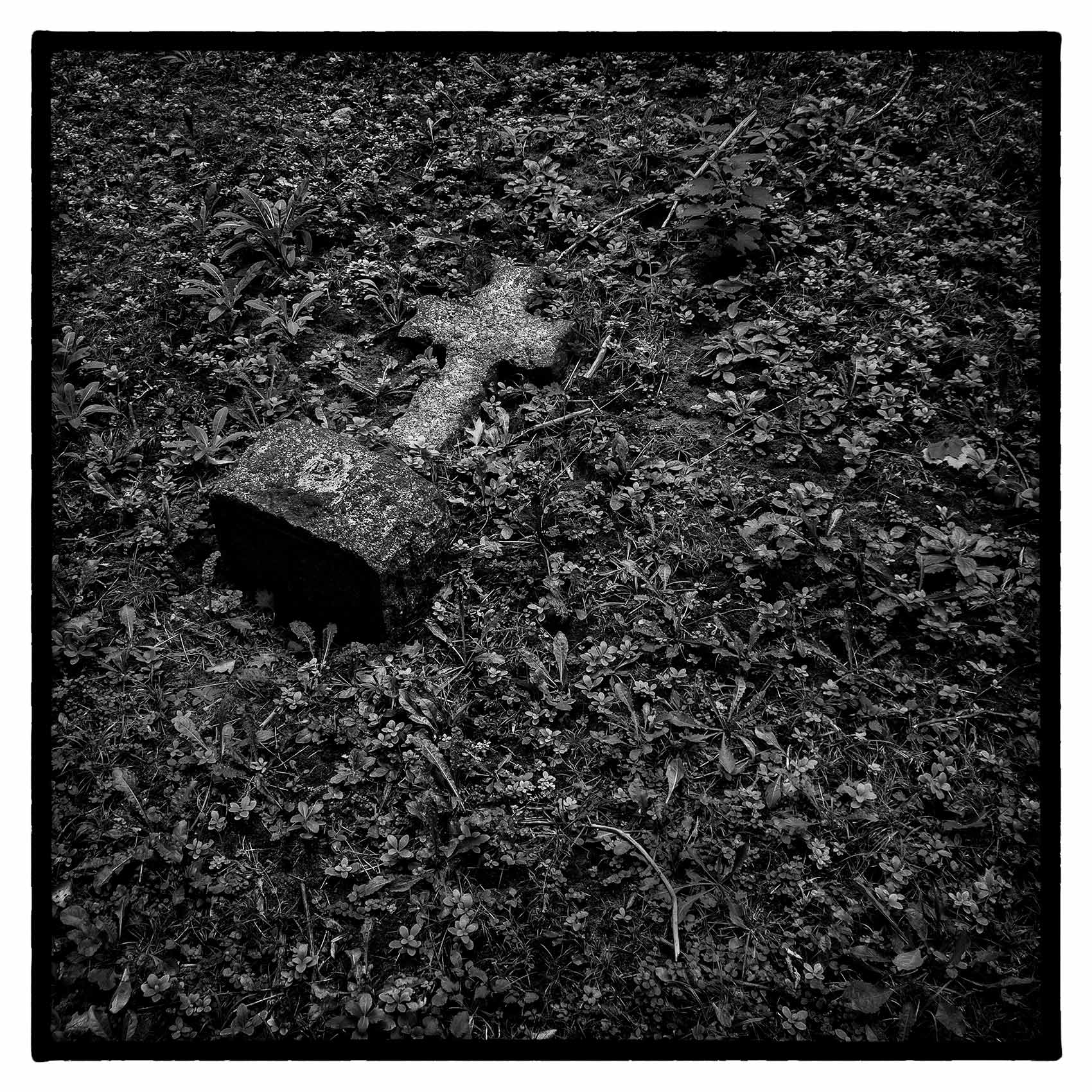 a fallen cross headstone lays in the grass on the ground at st. james cemetary in Toronto
