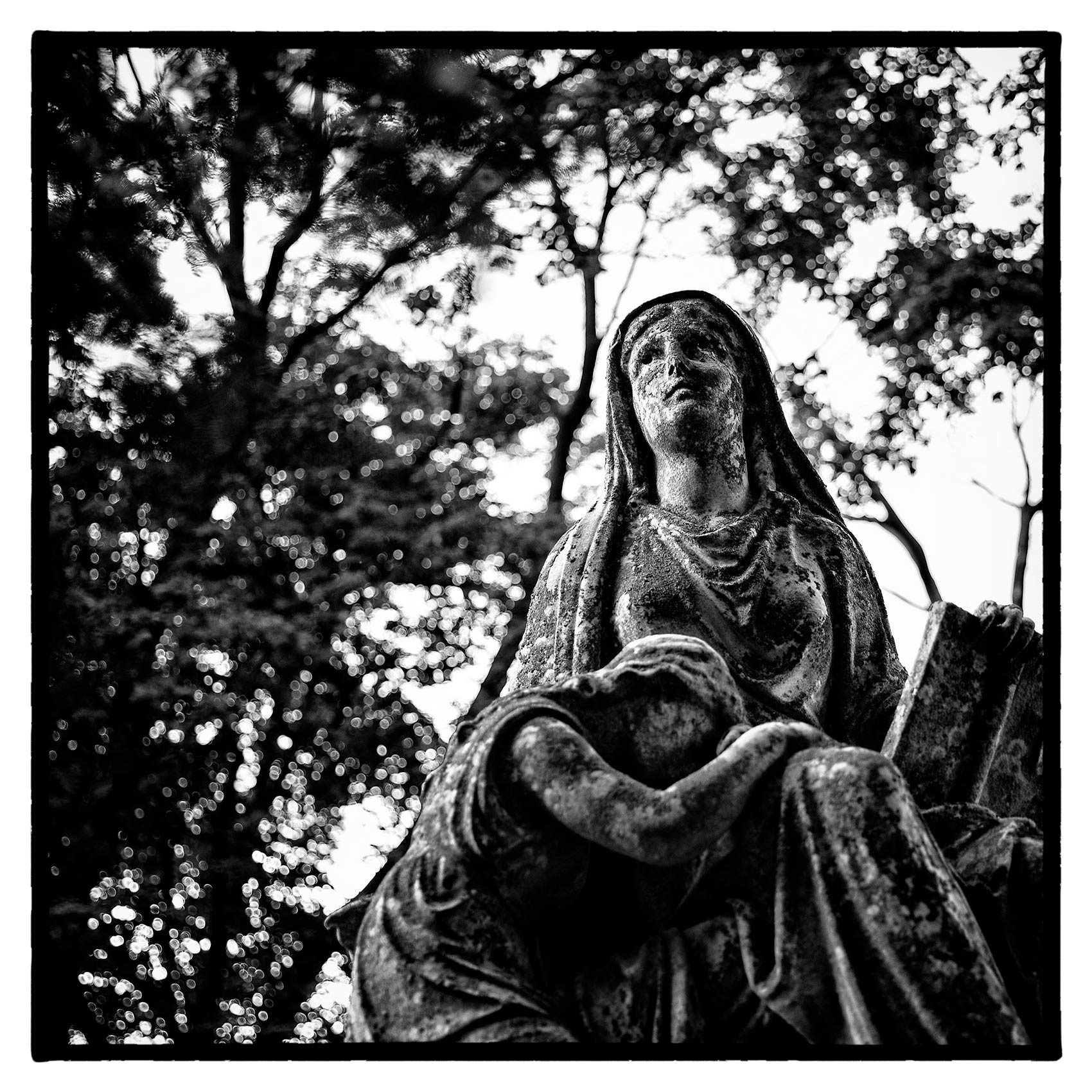 statue of the virgin mary looks towards the sky at St. James Cemetery in Toronto