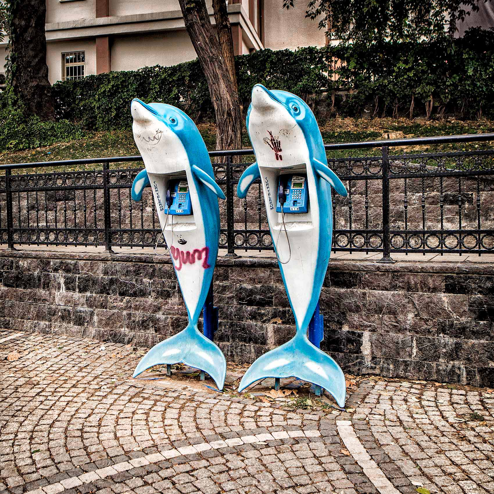 twin-telephone-booths-that-look-like-dolphins-in-the-karakoy-district-of-istanbul